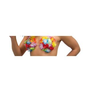 Hawaii-BH
